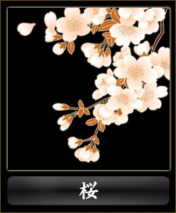 古典柄-桜
