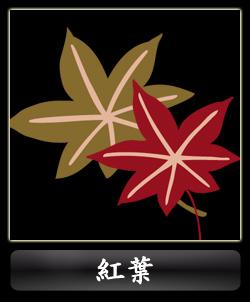 古典柄-紅葉