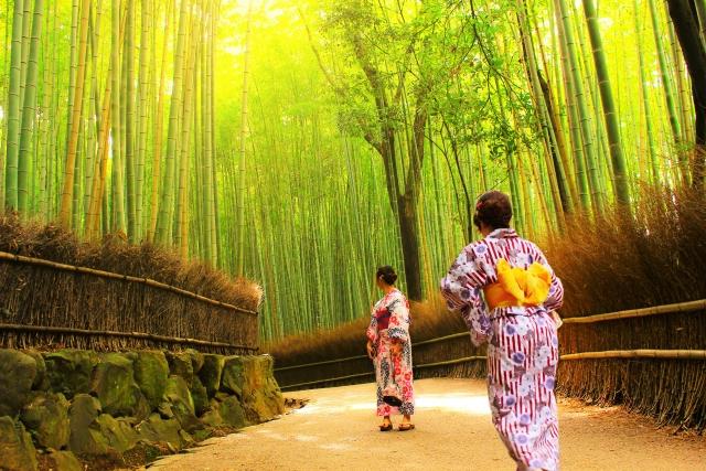 浴衣を着た女性たちが竹林の中を歩いている